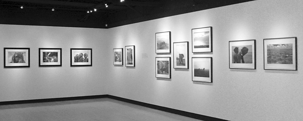 exhibition2 christo wilkinson Photography Exhibitions