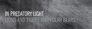 In Predatory Light - Christo & Wilkinson
