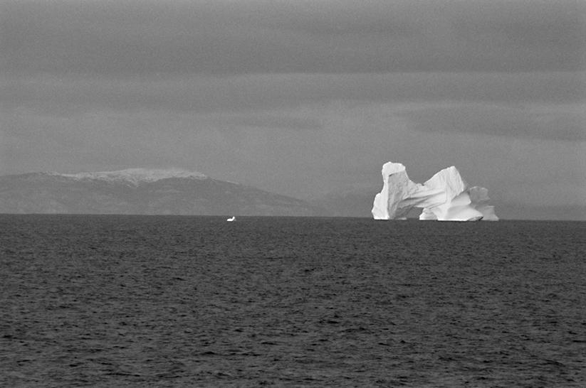 Melting Iceberg - ©Christo & Wilkinson Conservation Photography