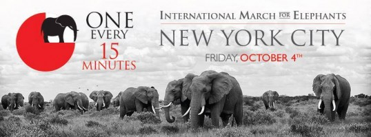 March for Elephants