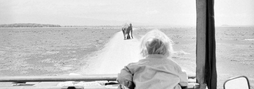 Kat Kramer's 'Films That Change the World'